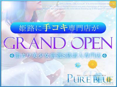 PURE BLUE~ピュアブルー~